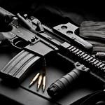 AR 15